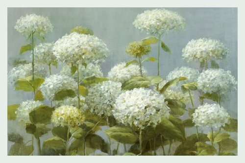 white-garden-hydrangea-de-danhui-nai-cadre-en-bois-argente-134-x-90cm