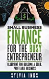 Small Business Finance for the Busy Entrepreneur: Blueprint for Building a Solid, Profitable Business (English Edition)