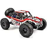 FTX5570 BUGGY OUTLAW 1/10 BRUSHED 4WD ULTRA-4 RTR