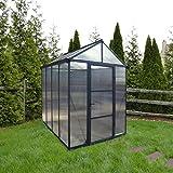 Palram Aluminium Gewächshaus Gartenhaus Glory 6x8 anthrazit // 195x244x268 cm (LxBxH); Treibhaus & Tomatenhaus zur Aufzucht
