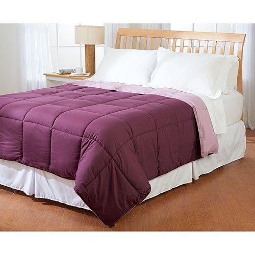 Dreamz lenzuola Super morbido 600thread count 1PC piumone/trapunta 100% cotone (300gsm) Euro doppio Ikea, Wine Solid Egyptian Cotton 600TC piumino in fibra