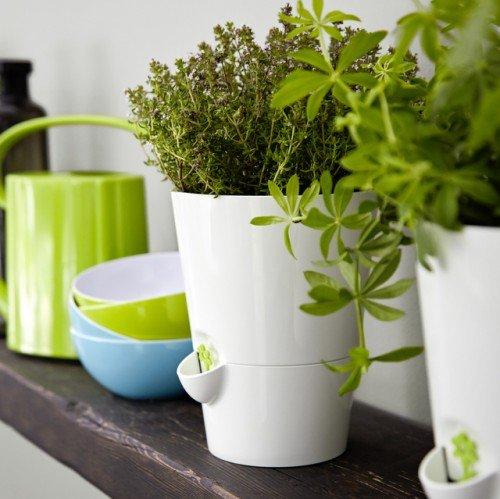 Emsa Kräutertopf Fresh Herbs, Kunststoff, weiß