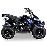Miniquad Kinder ATV Cobra blau / schwarz - 5