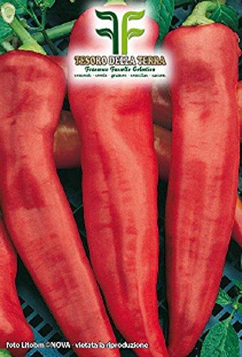 150 aprox - Paprika Corno Di Toro Samen - Capsicum annuum In Originalverpackung Hergestellt in Italien - Rote Paprika