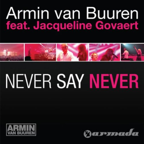 Never Say Never (Alex Gaudino Dub)