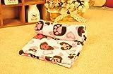 Global- Winter Doghouse Matte / Lamm Kaschmir Blanket / Pet Blanket Quilt / Puppies Decke Katze Steppdecke / Widerstand zu beißen starke dicke Baumwolle Pad ( größe : 51*38cm )