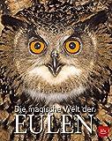 Die magische Welt der Eulen (BLV) - Michael Lohmann