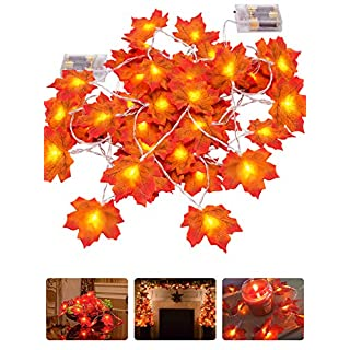ANPHSIN 2 Pieces Lighted Fall Garland- 30 LED Maple Leaf Lights for Thanksgiving Decor(9.8ft, Warm Light)