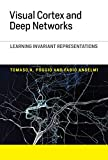 Visual Cortex and Deep Networks: Learning Invariant Representations (Computational Neuroscience Series)