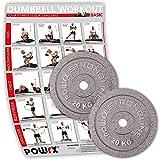 POWRX Set Hantelscheiben | Verschiedene Gewichtsvarianten 5-40 kg | Gusseisen Gewichte | Bohrung 30...