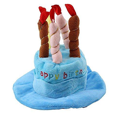 ag Hut mit Kuchen Kerzen Design Party Kostüm Zubehör Headwear (Eine Größe passt meistens) (Blau) (Party Passt)