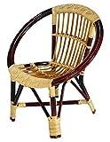 #1: Virasat Saturn Outdoor Chair/Garden Chair/Balcony Chair for Outdoor/Indoor Use/Color-Brown