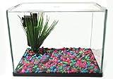 Fish 'R' Fun Aquarium Starter Kit 15ltr