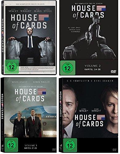 Staffel 1-4 (16 DVDs)