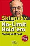 No-Limit Hold'em. Theorie und Praxis
