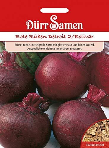 Dürr Samen 4167 Rote Rübe Detroit 2 Bolivar (Rübensamen)