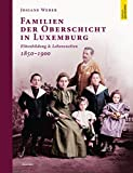 Familien der Oberschicht in Luxemburg: Elitenbildung & Lebenswelten 1850 - 1900 (Open Science / Mit der Reihe Open Science präsentiert der Verlag Guy ... Sparten von Wissenschaft und Forschung.) -