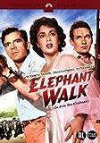 Elefantenpfad / Elephant Walk (NL)