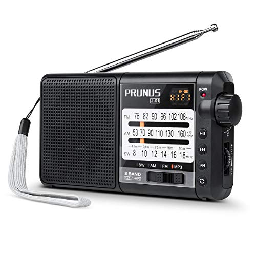 Radio PRUNUS J-01, Excellent Réception FM/AM(MW)/SW, Support microSD avec MP3 WMA, Transistor DSP, Batterie Rechargeable et Remplaçable de 2200mAh (20h d'écoute)