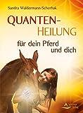Quantenheilung für dein Pferd und dich (Amazon.de)