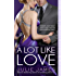 A Lot Like Love (FBI/US Attorney)