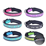 Personalisierte Hundehalsband benutzerdefinierte Halsbänder Bestickt mit Pet Name Telefonnummer Halsbänder für Jungen Mädchen Hunde 4 einstellbare Größen: XSmall Small Medium Large