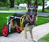 Verstellbare Hundeleine Rollstuhl für Hunde (L), Gewicht 60TO 100lbs, Hinterbeinen Rehabilitation, leichtes