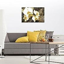 DekoShop Glasbild Echtglas Glasfoto Wandbild Orchideen Auf Baumrinde  AMDGT20032G3 G3 (60cm. X 40cm.