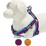 Blueberry Pet Step-in Geschirr 40-50cm Brust Urban Chic Diamantenmuster Neopren Gepolstertes Hundegeschirr in Kräftig Rot, Passender Hundehalsband erhältlich separate