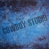 CowboyStudio Hand Painted 10' X 20' Blue Purple Muslin Photography Background