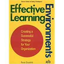 Effective Learning Environments: Creating a Successful Strategy for Your Organization