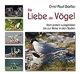 Die Liebe der Vögel.: Vom ersten Lustgeträller bis zur Reise in den Süden - Ernst Paul Dörfler
