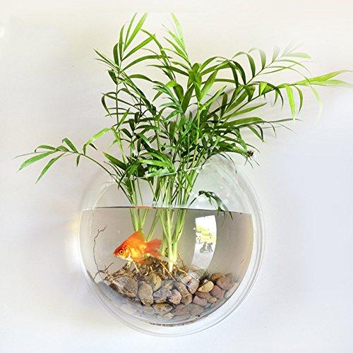 Bocaux à poissons Miroir arrière en acrylique Fish Bowl Décoration murale à suspendre pour aquarium Réservoir aquatique Pet Supplies Pet Products Fixation murale pour aquarium Mode Creative Acrylique Mur Monté Poissons Réservoir Bol Vase Aquarium Plante Pot Décor À La Maison