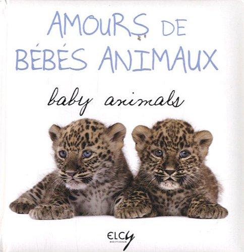 Amours de bébés animaux par Daniela Capparotto