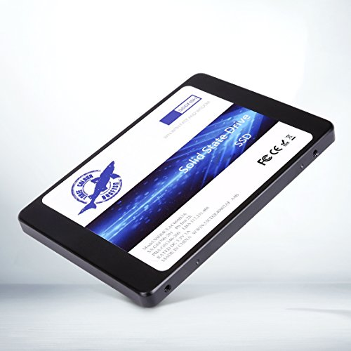 - Dornhai SSD 30GB 32GB 60GB 120GB 240GB 480GB 64GB 128GB 256GB SATA3SATAIII 6,3cm Interne Solid State Drive 7mm Höhe PC Laptop Festplatte Schwarz Schwarz, Grau 64GB