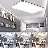ETiME® Ultraslim LED Deckenleuchte 96W Dimmbar Deckenlampe mit Fernbedienung Modern Wohnzimmer Lampe Schlafzimmer Küche Panel Leuchte 2700-6500K Silber (95x63cm 96W Dimmbar) [Energieklasse A++]