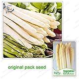 20 Semi / pack, semi di asparagi bianchi, verdure bianco asparagi asparagi ortaggi biologici, decorazione bonsai