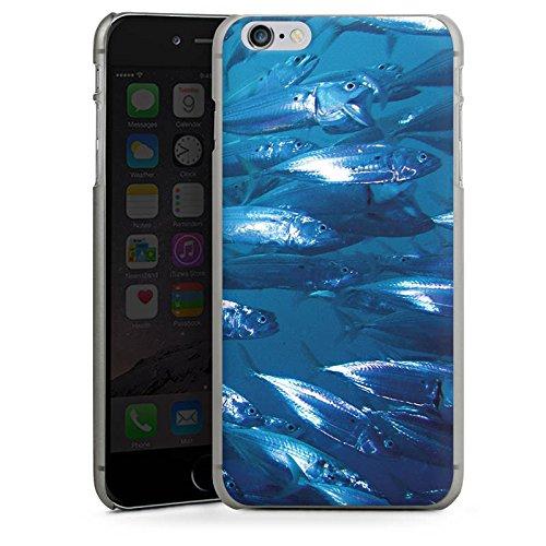 Apple iPhone X Silikon Hülle Case Schutzhülle Fisch Fische Fischschwarm Hard Case anthrazit-klar