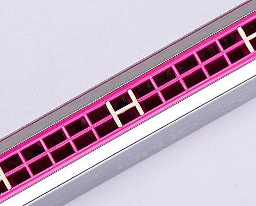 DDOQ 24 Loch Pink Tremolo Mundharmonika für Anfänger C