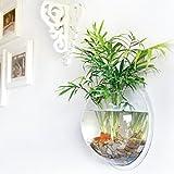 Ailier Aquarium Wand Montiert Tank Wandaquarium Transparentem Acryl Blase Clear Glas Vase Bowl Halbkugel Anbringen an der Wand Haus Dekoration (21*21*11.5 cm)