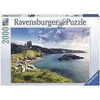 Ravensburger 16626 Rembrandt- Puzzle da 2.000 pezzi