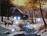 HEITRONIC LED Bild Winterlandschaft Waldidylle