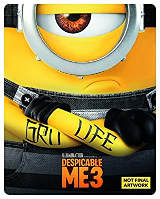 Despicable Me 3 (DVD + digital download) [2017]