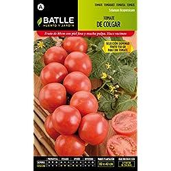 Semillas Batlle - Tomate De Colgar Domingo
