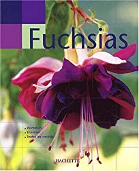 Main verte : Fuchsias
