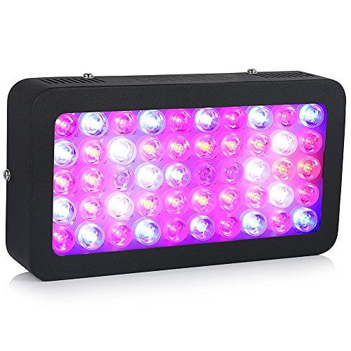 250w Grow Light (LEDGLE 250W Pflanzenlampe Volles Spektrum Pflanzenleuchte LED Grow Light für Zimmerpflanzen Gemüse und Blumen)