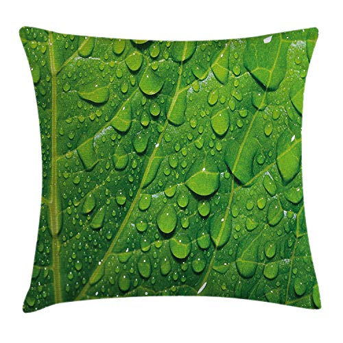 Cupsbags Green Throw Pillow Cushion Cover, Macro Close Up Photo of Fresh Big Tree Leaf with Drops of Water Natural Texture Botanical, Decorative Square Accent Pillow Case, Green24 -