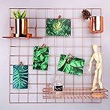 Rumcent Gitternetz-Wandplatte zur Darstellung von Fotos oder Anbringung von Notizen als Erinnerung, Farbe: Rosengold, dekorative Wandkunst, metall, rose gold, 23.6