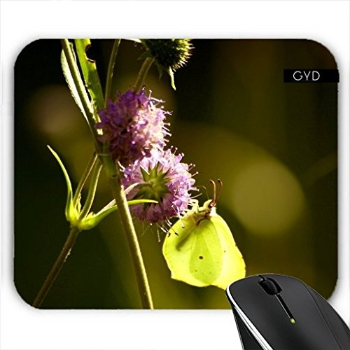 mousepad-summer-butterfly-by-pivi