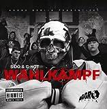 Sido: Wahlkampf (Audio CD)